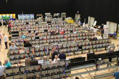 Budgerigar Society opens ultimate Premier title to all showing statuses