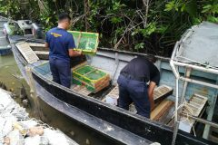 Smugglers drown illegally caught birds in horror trafficking incident