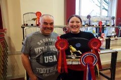 North Wales Fife fancier achieves club's record for best novice title