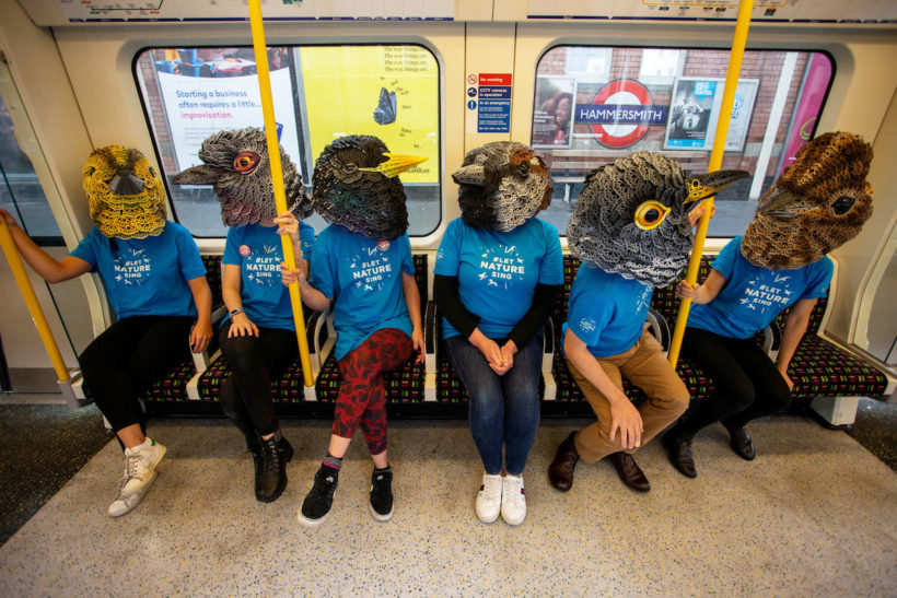 Birdsong takeover day reaches the millions