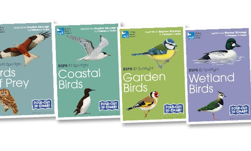Four new fold-out charts puts a 'spotlight' on our birds