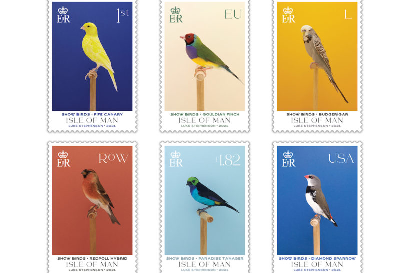 New stamp collection focuses on exhibition birds