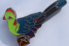 Badges are commissioned to raise awareness of a rare island turaco